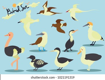 Set of birds on a blue background.