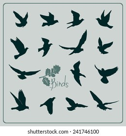 Set of birds silhouettes - flying.