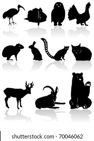The set from black animal silhouettes with shadow