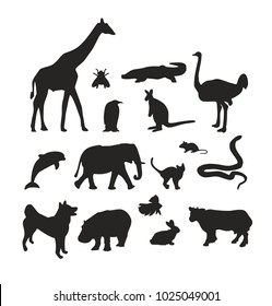 Set of black animals silhouettes on white background. Vector pets collection.