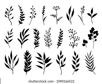 set of black branches and herbs