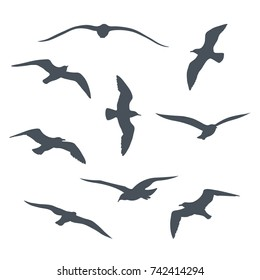 Set of black  flying seagull silhouettes on white background.