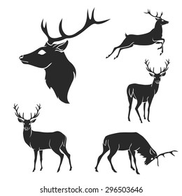 Set of black forest deer silhouettes. Suitable for logo, emblem, pattern, typography etc. Isolated black on white background. Vector illustration
