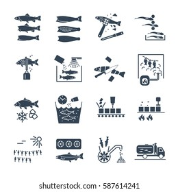 set of black icons processing and preserving of fish