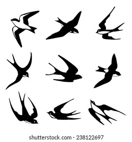 Set of black isolated vector silhouettes of birds (barn swallow, swift, house martin).  Vector illustration.