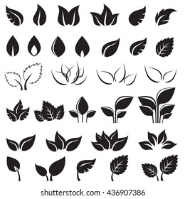 Set of black leaves design elements isolated on white background. This image is a vector illustration.