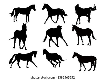 Set of black silhouette of horses on white background. Collection various forms, pose. Jumps, plays,walks. Elements for design, pet shop, food for animals, equestrian school. Vector illustration