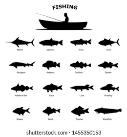 Set of black silhouette of sea river fish. Vector illustration isolated on white background. Fish icon collection, side view. The concept of fishing.
