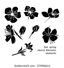 Set of black silhouette spring cherry blossom flowers. Hand drawing. Black and white. Vector illustration