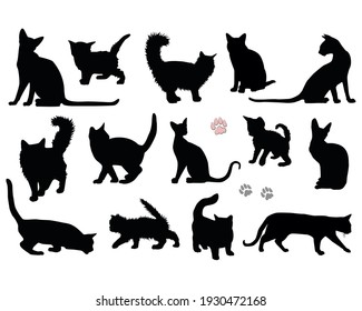 Set black silhouettes of cats and kittens cat footprints isolated on a white background