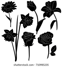 Set of black silhouettes of flowers isolated on a white background