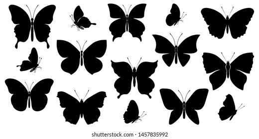 Set of black silhouettes of various butterflies on a white background. Vector illustration.