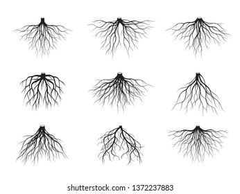 A set of black tree roots. Vector Illustration. Plants in Garden. Part of the plants underground.