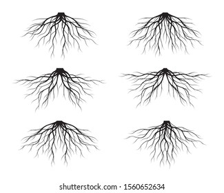 Set of Black Tree Roots. Vector Illustration. Plant and Garden.