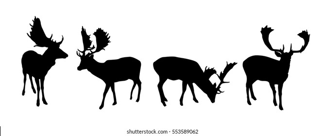 Set of black vector fallow deer silhouettes isolated on white background