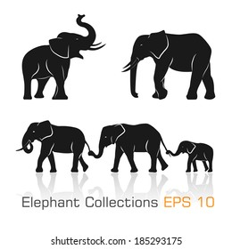 Set of black & white elephants in different poses - Vector illustration