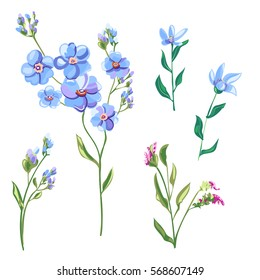 Set of blue flowers and buds, forget-me-not, tweedia, stems and leaves on white background, digital draw, decorative illustration, vector, EPS 8