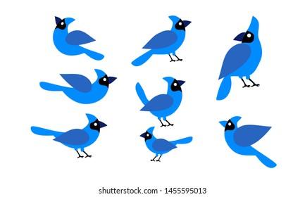 set of blue jay bird logo icon design vector illustration