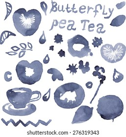 Set of blue vector elements for design painted with natural color - Blue pea tea.