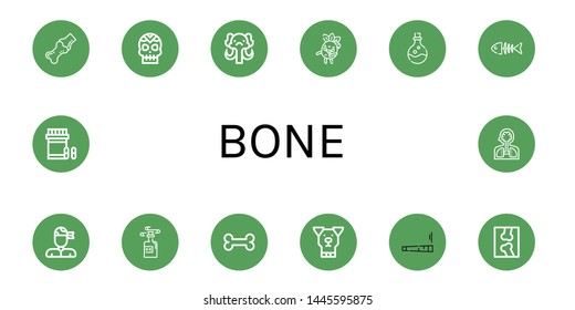 Set of bone icons such as Joint, Skull, Mammoth, Zombie, Poison, Fish bone, Pirate, Bone, Dog, X ray, Analgesic, Human organs ,