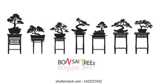 bonsai images  stock photos  u0026 vectors