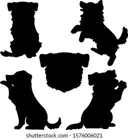 Set of Border Collie silhouettes