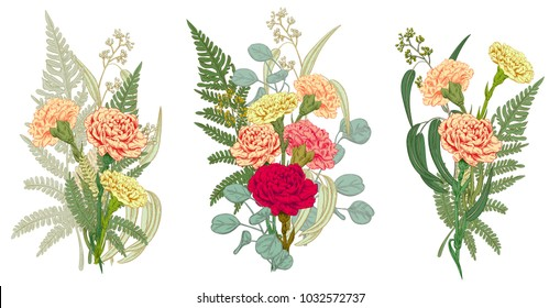 Set of bouquets carnation, fern, eucalyptus silver dollar, seeded: red, pink, yellow flowers, leaves, white background for Mother's Day, hand draw, engraving vintage sketch style, botanical vector