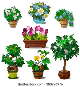 A set of bouquets of flowers. Trees bonsai for landscaping and modern interior of the fashion room. Vector illustration.