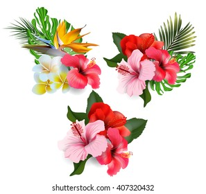 A set of bouquets of tropical flowers hibiscus. Summer  background Concept. Summer background with tropical flowers.  Template Vector.