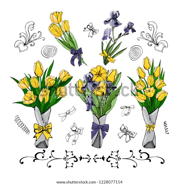 Set of  bouquets with yellow tulips and viollet iris. Hand drawn colored  sketch with tulip and iris flowers and  leaves. Vector illustration isolated on white background.