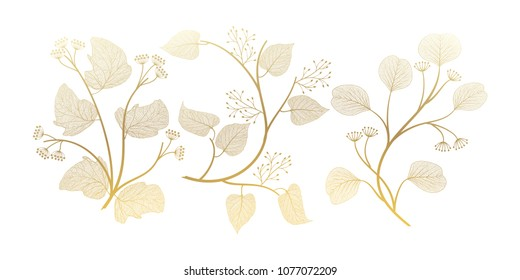 Set branches with leaves isolated. Vector illustration. EPS 10.