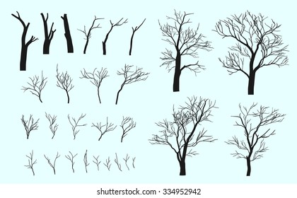 Set of branches. Trees are formed from these branches.