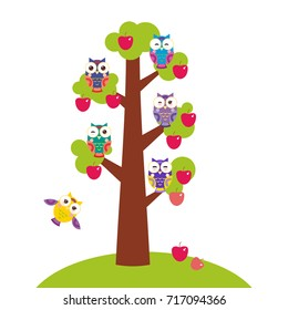set bright colorful owls on the branch of apple-tree with red apples on white background. Vector