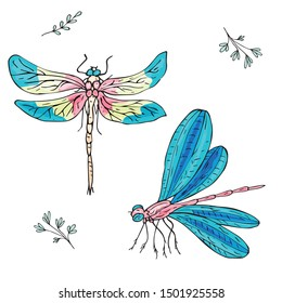 Set of bright multi-colored dragonflies. Fashionable popular insects. Pink, blue, yellow colors. Children's style. Doodling. Isolated objects on a white background.