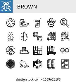 Set of brown icons. Such as Cockroach, Chocolate chip, Coffee cup, Cold coffee, Cowboy hat, Chocolate egg, Chocolate, Bookshelf, Cheesecake, Parquet, Coffee beans , brown icons