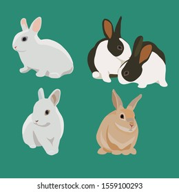 Set of bunny rabbit vector realistic style