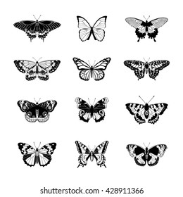 Set of butterflies. Butterfly isolated on white background. Butterflies silhouettes. Vector illustration