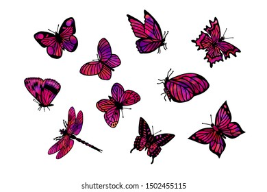 set of butterflies, dragonfly. eps10 vector illustration.in purple. hand drawing
