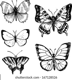 set of butterflies, ink drawing, vector illustration
