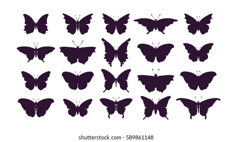 Set of butterflies, ink silhouettes. Glowworms, fireflies and butterflies icons isolated on white background. Hand drawn Vector illustration.
