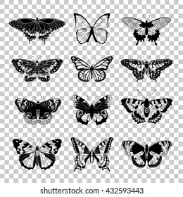 Set of butterflies silhouettes. Butterfly icons isolated on transparent background. Vector illustration