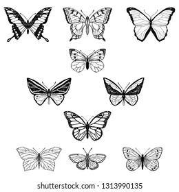 Set of butterflies. Vector cartoon illustrations. Isolated objects on a white background. Hand-drawn style.