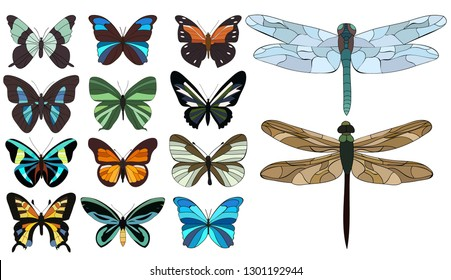 set of butterfly and dragonfly