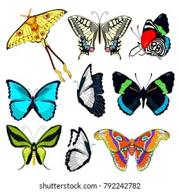 set butterfly Ornithoptera paradisea, wings  bird  paradise,  blue morpho monarch, Madagascar comet moth moon, Diaethria clymena.  vector illustration
