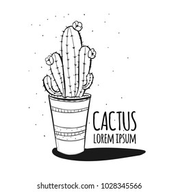 Set of cactus. Hand drawn succulent ornament. Ink illustration. A set of cacti - line drawing. Vector illustration of a cactus isolated on a white background. Cute hand drawn vector cactus.