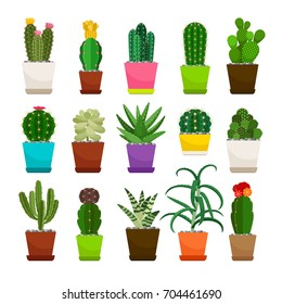 Set of cactus houseplants in flower pots. Vector icons on white background