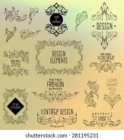 Set of calligraphic and floral design elements.