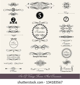 set of calligraphic labels and text dividers in vintage style