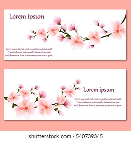 set of cards or invitations with gentle pink spring flowers Sakura.