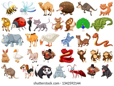 Set of cartoon animal illustration